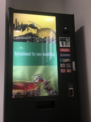 Plunkett's Pest Control; Backlit graphics for soda dispenser - Fridley, MN